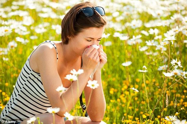 summer allergies 2017