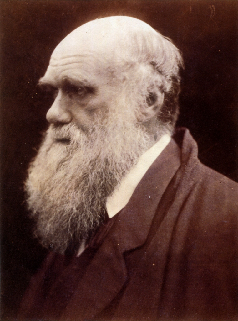 Charles Darwin by Julia Margaret Cameron 3