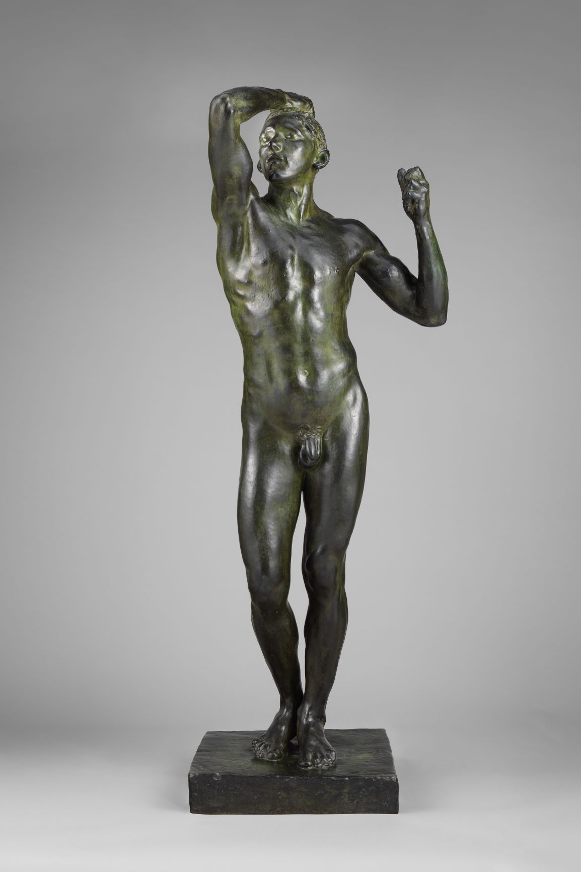 the age of bronze 1877 01