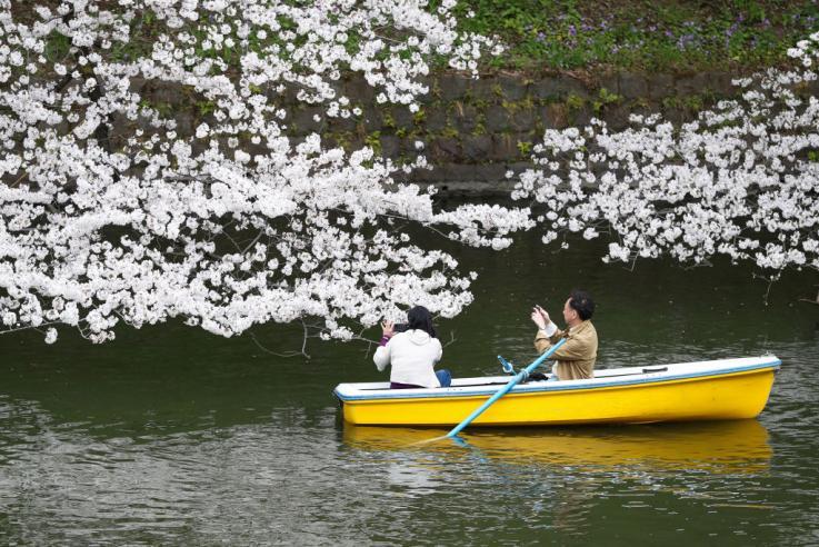 δωρεάν ραντεβού Οκινάουα