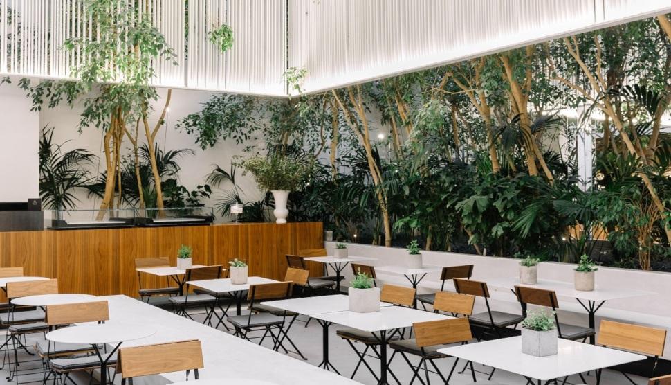 Το Cycladic Café του Μουσείου Κυκλαδικής Τέχνης, φωτογραφία: Paris Tavitian