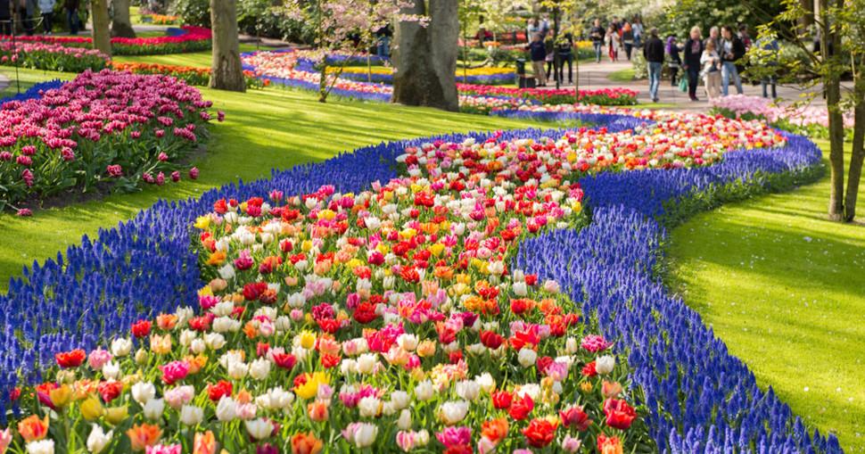 Ο κήπος Keukenhof στην Ολλανδία