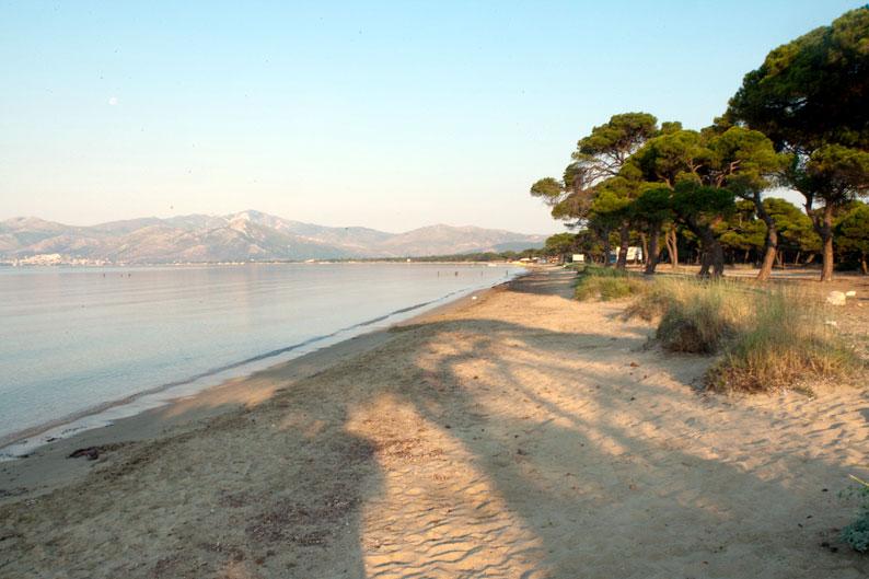 Παραλία Σχινιά