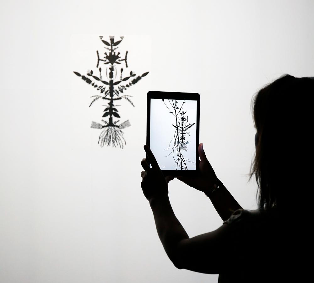 Πορτραίτο επαυξημένης πραγματικότητας του αόρατου φυτού