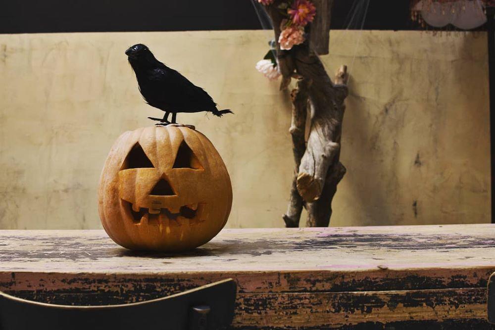 Το Noel στολίζεται και υποδέχεται το Halloween, Φωτογραφία: Noel