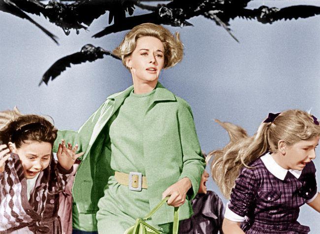 """Η Τίπι Χέντρεν στο """"The Birds"""""""