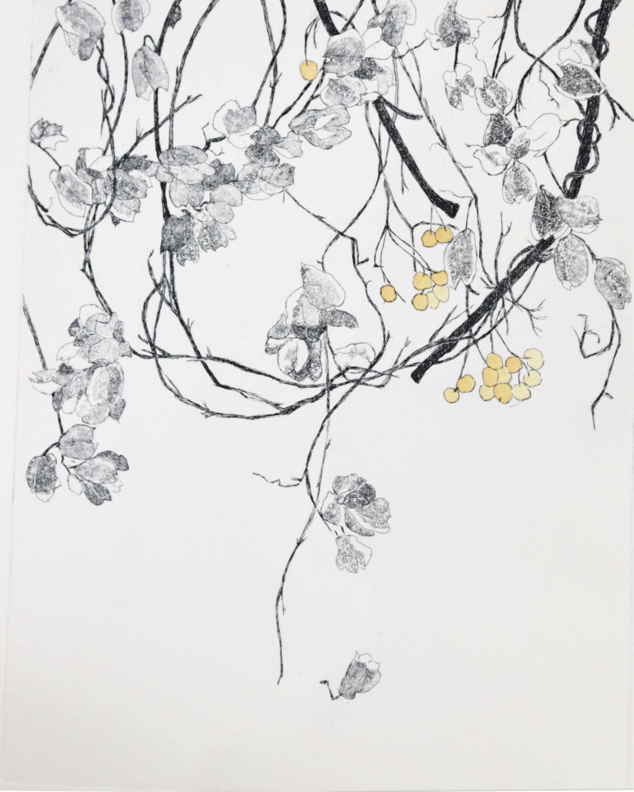 SHIROTA Tsuneko Σπόρος ΙΙΙ Μεικτή τεχνική 22,5x17,5εκ.