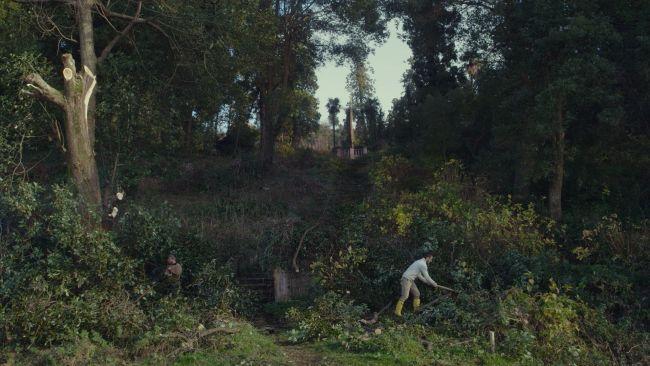 Δαμάζοντας τον κήπο / Taming the Gardenτης Σάλομε Τζασί