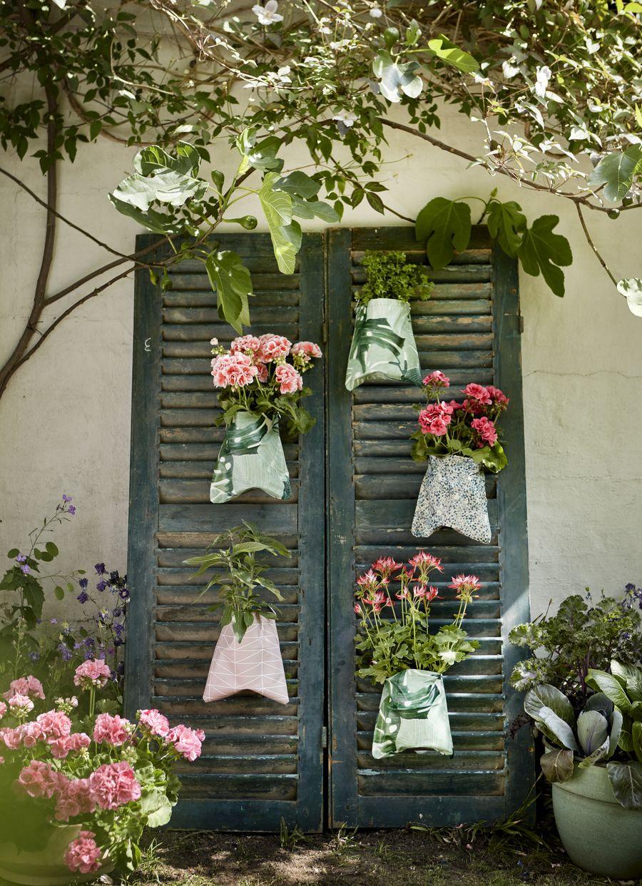 photo credits: Pelargonium for Europe