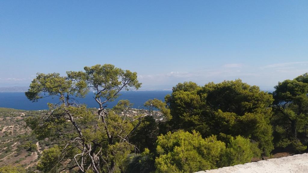 Αίγινα: Ένας πράσινος προορισμός μόλις μία ώρα από την Αθήνα, φωτογραφία: Ειρήνη Μωραΐτη