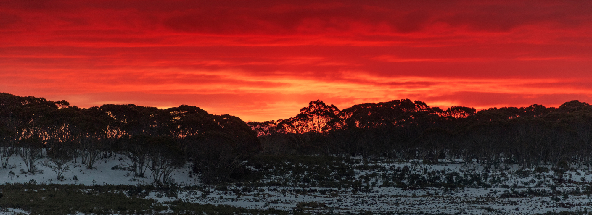 Tzortzis Snowy hydro New South Wales Australia